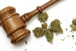 What the Marihuana for Medical Purposes Regulations Overlook